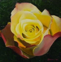 Yellow Rose; 12x12 oil on canvas; commission piece