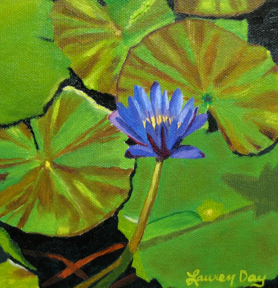 Lily Pads; 6x6 oil on canvas; private collection