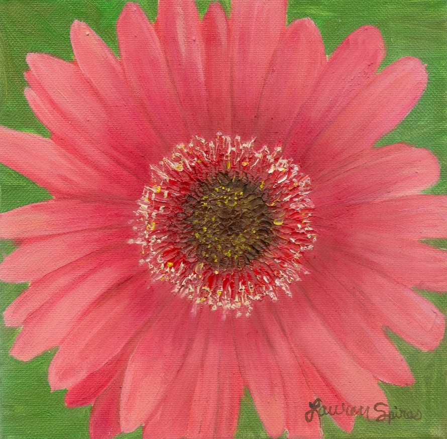 Coral Daisy; 8x8 oil on canvas
