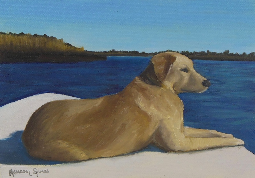 Brady; 5x7 oil on canvas