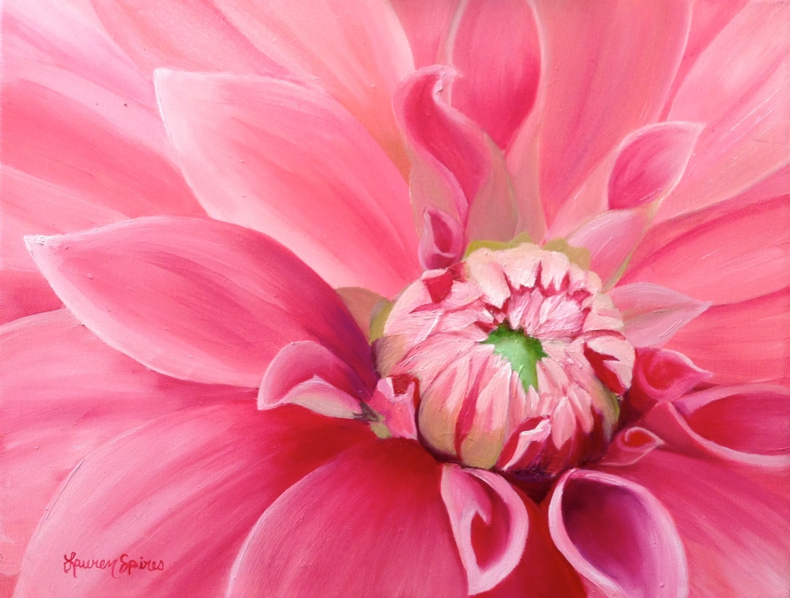 Pink Dahlia; 12x16 oil on canvas; SOLD